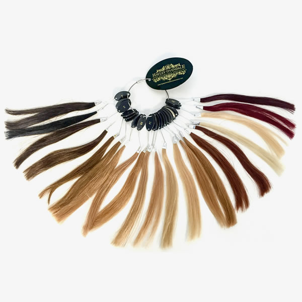 Hair extension colour ring hayley tivendale pmusecretfo Images
